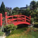 ACCOYA® Brücke